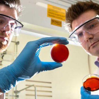 Mercury detection using orange peels and industrial waste
