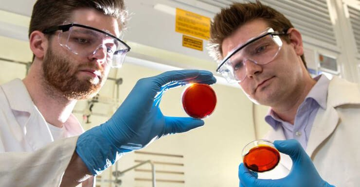 Mercury detection using orange peels and industrial waste