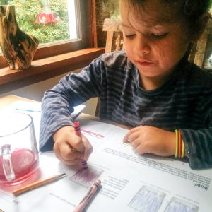 girl recording ph observations in lab book of the color changes the natural pH indicator purple cabbage goes through