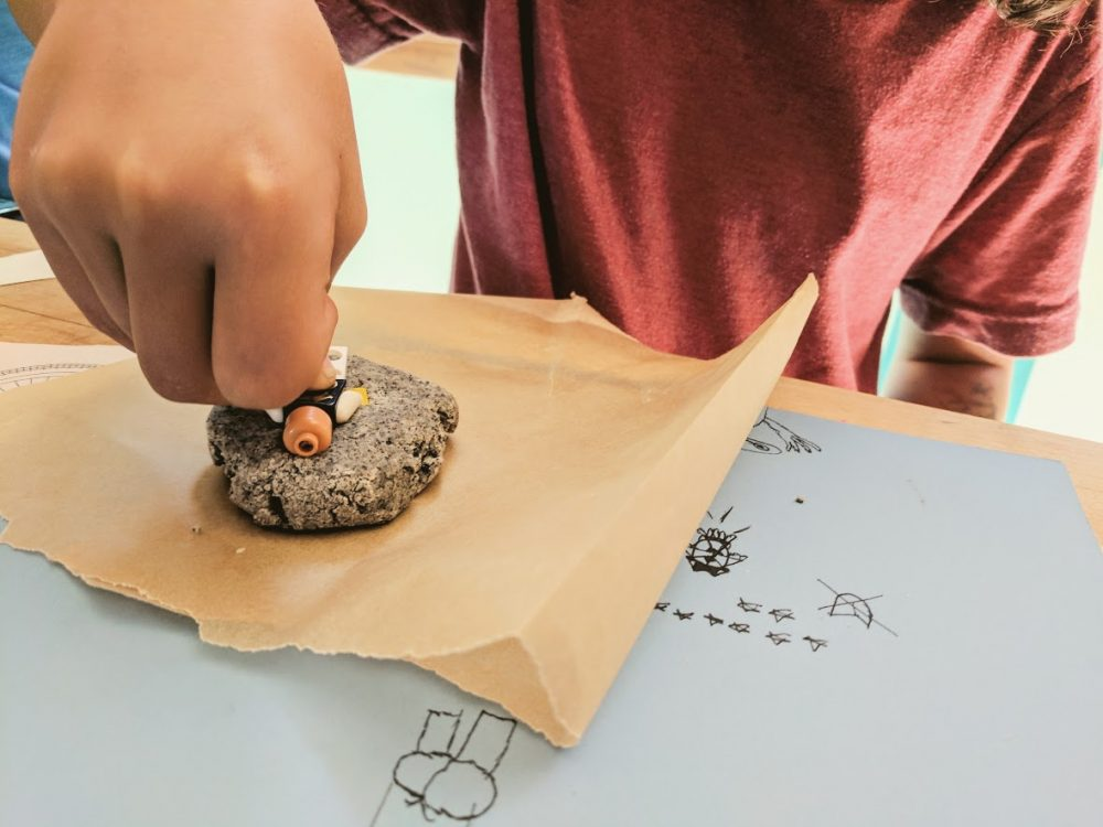 What can we learn from petrified fossils