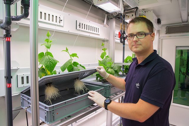 EDEN:ISS is working on growing edible fresh astronaut food in antarctica.