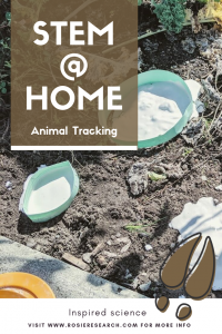 Animal Tracking Pin featuring 3d printed molds