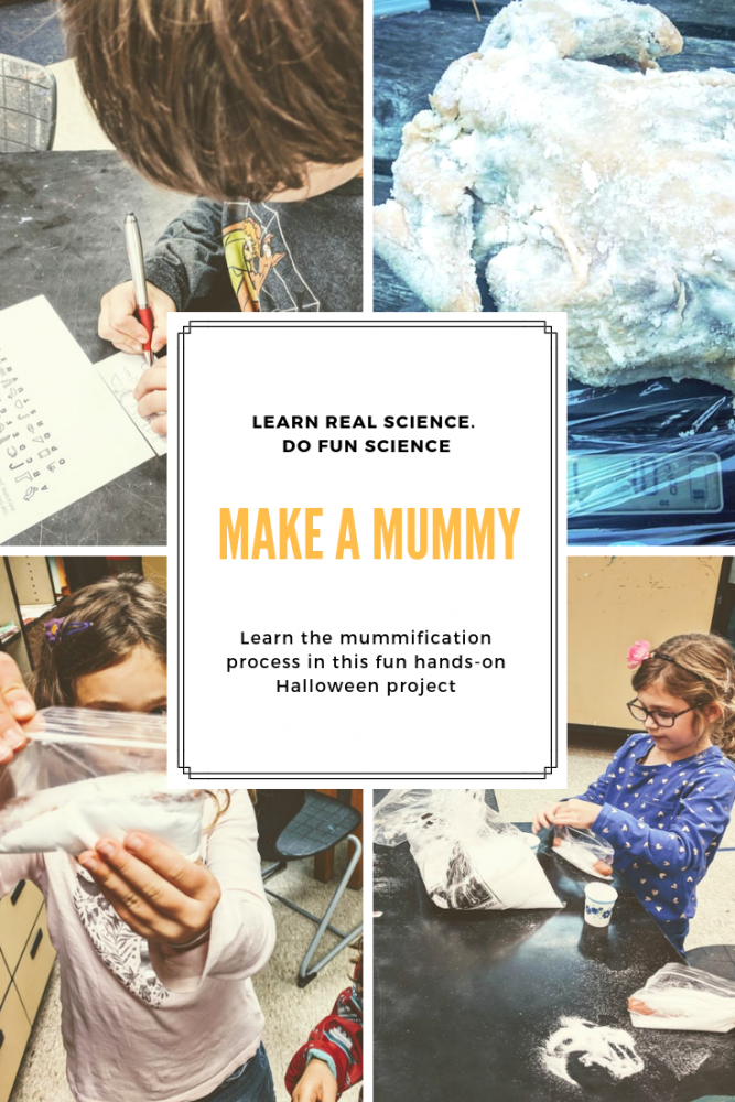 discover how to make a mummy as we learn the role of osmosis in the mummification process