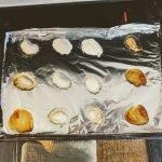 STEM activitiy - oven calibration