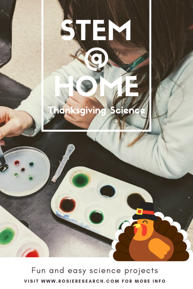 thanksgiving activities that teach - how to make gel window clings